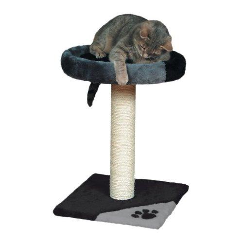 Un arbre à chat griffoir