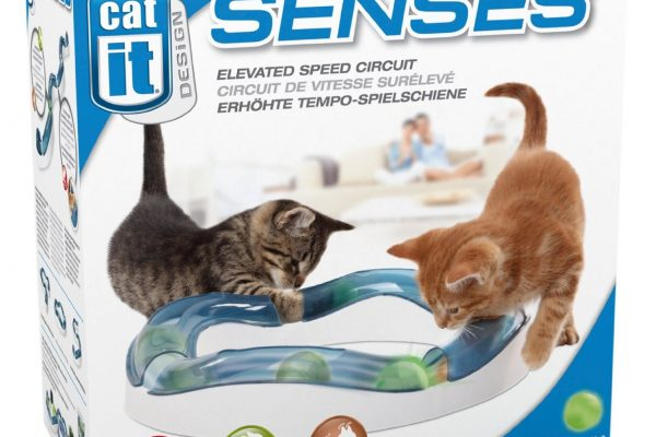 Catit senses circuit play