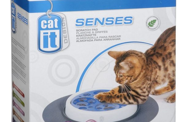 Scratch pad Catit senses