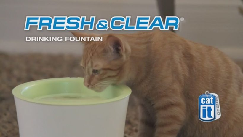 Fontaine Catit fresh and clear, pour les chats