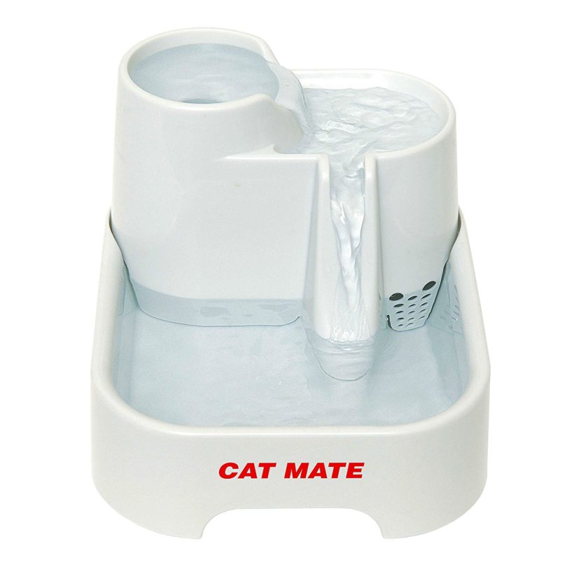 Fontaine cat mate